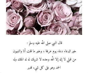 eid mubarak, flowers, and islam image