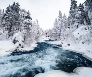 landscape, photography, and winter image