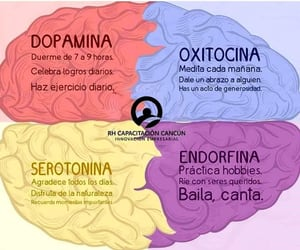 brain, dopamine, and health image
