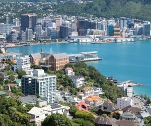 new zealand, that's a trip, and learn learning image