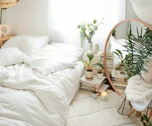 plants, cozy, and home image