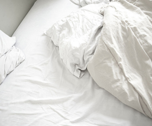 bed, cozy, and pillows image