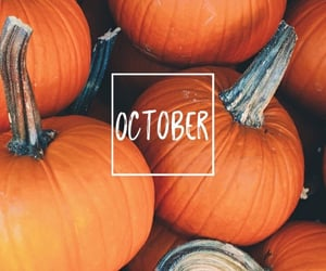 pumpkin, october, and fall image