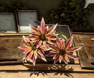 flowers, tray, and dishonored image