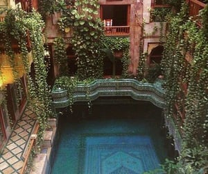 pool, plants, and travel image