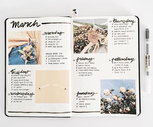 march, plans, and week image