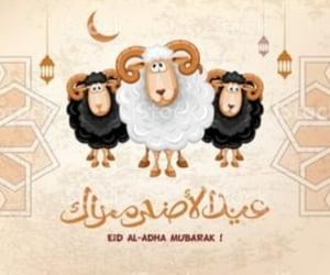 eid, eid mubarak, and happy.eid image