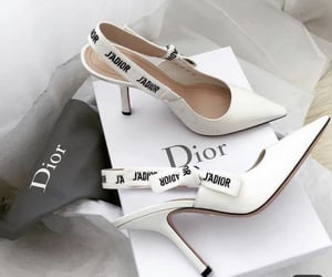 shoes, dior, and luxury image