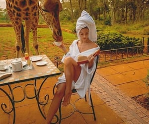 book, giraffe, and bestoftheday image