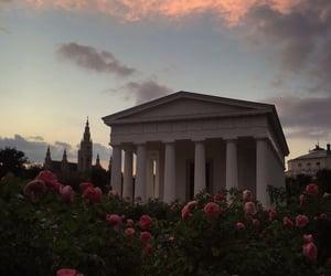 flowers, sky, and beautiful image
