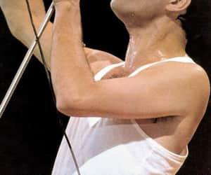 famosos, musica, and Freddie Mercury image