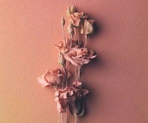 aesthetic, fondo, and flower image