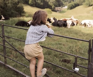 bath, child, and cows image