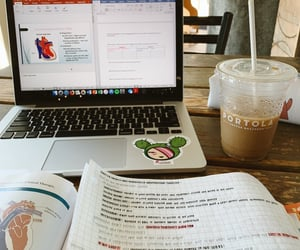 college, study, and revision image