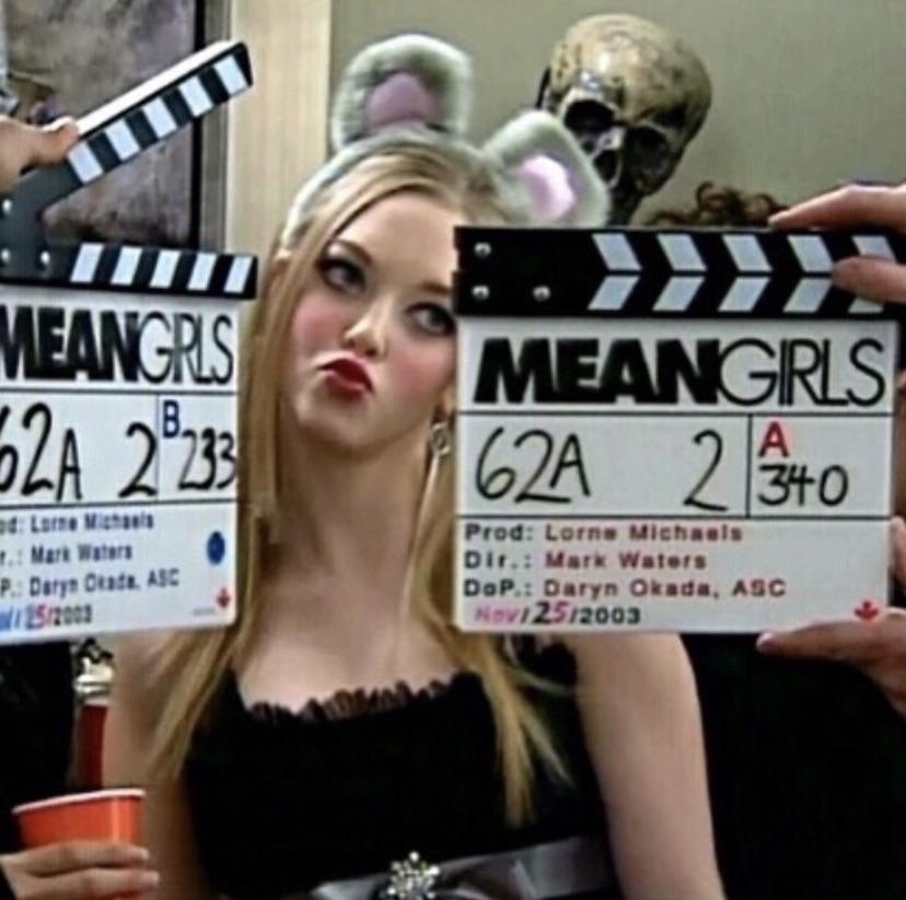 mean girls, movie, and amanda seyfried image
