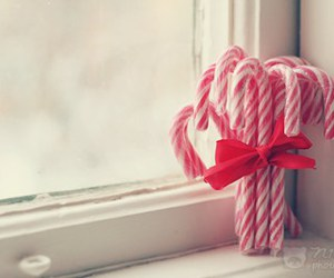 candy cane, christmas, and red image