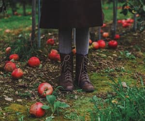 apples, autumn, and boots image