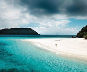 beach, blue, and botanical image