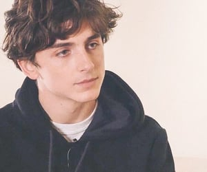 timothee chalamet, call me by your name, and beautiful boy image