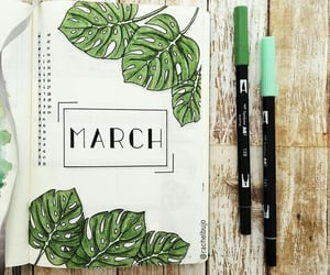 bullet journal, aesthetic, and green image