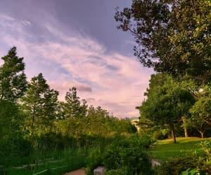 green, korea, and sky image