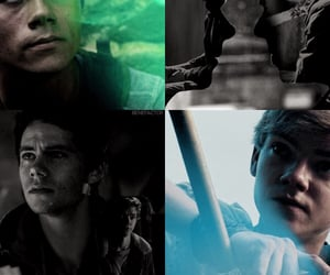 newt, thomas, and tdc image