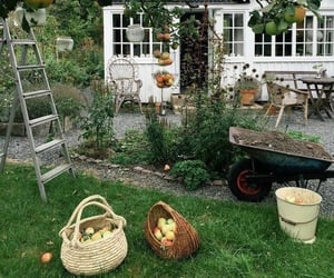 apples, garden, and house image