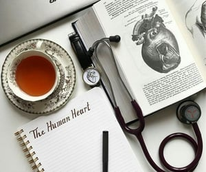 book, heart, and study image