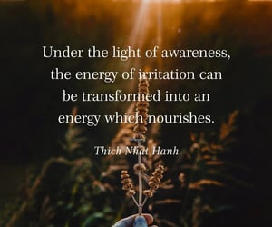 calm, daily, and Thich Nhat Hanh image