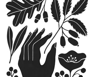 art, black & white, and bw image