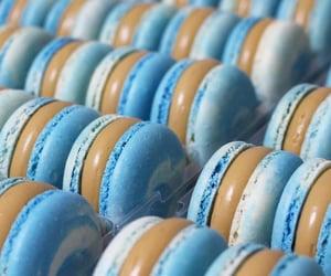 blue, chocolate, and Cookies image