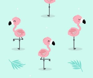 flamingo and wallpaper image