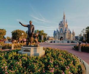 disney and magic kingdom image