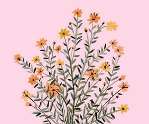flowers, yellow, and background image