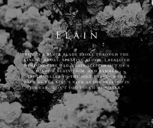 acomaf, elain archeron, and acowar image