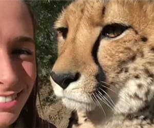 animal, animals, and cute image