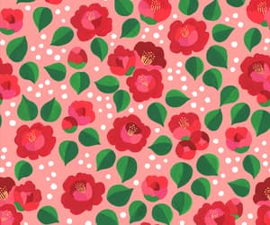 background, blooming, and camellia image