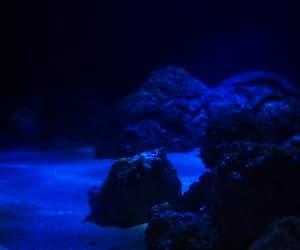 blue, gif, and tumblr image