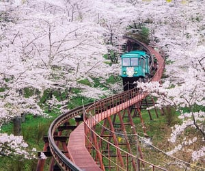 asia, japan, and train image