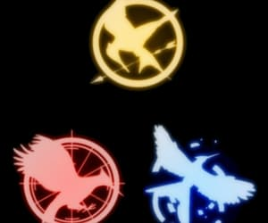 thg and thehungergames image