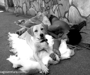 beggar and love image