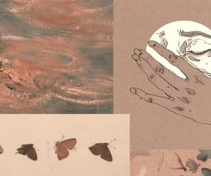 butterflies, butterfly, and hand image