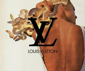 brand, fashion, and Louis Vuitton image