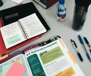 school, notes, and study image