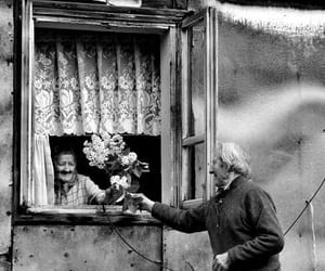 love, flowers, and old image