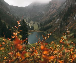 nature, autumn, and travel image