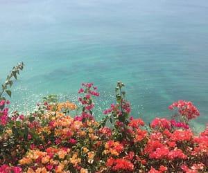 flowers, ocean, and sea image