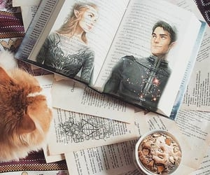 books, feysand, and bookstagram image