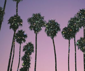 glitter, palm trees, and sunset image