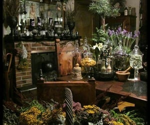 witch, magic, and plants image